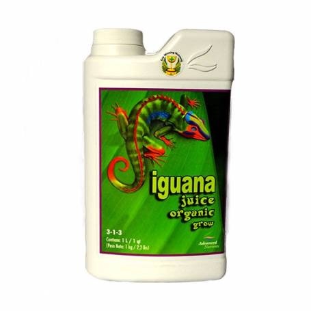 leyenda iguana
