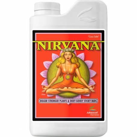 Nirvana - AN