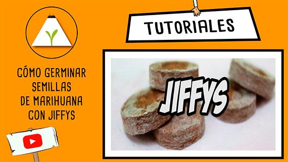 tutorial_germinar_jiffy.jpg